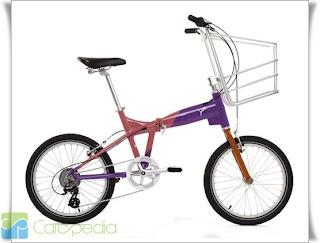Harga Sepeda Anak basket