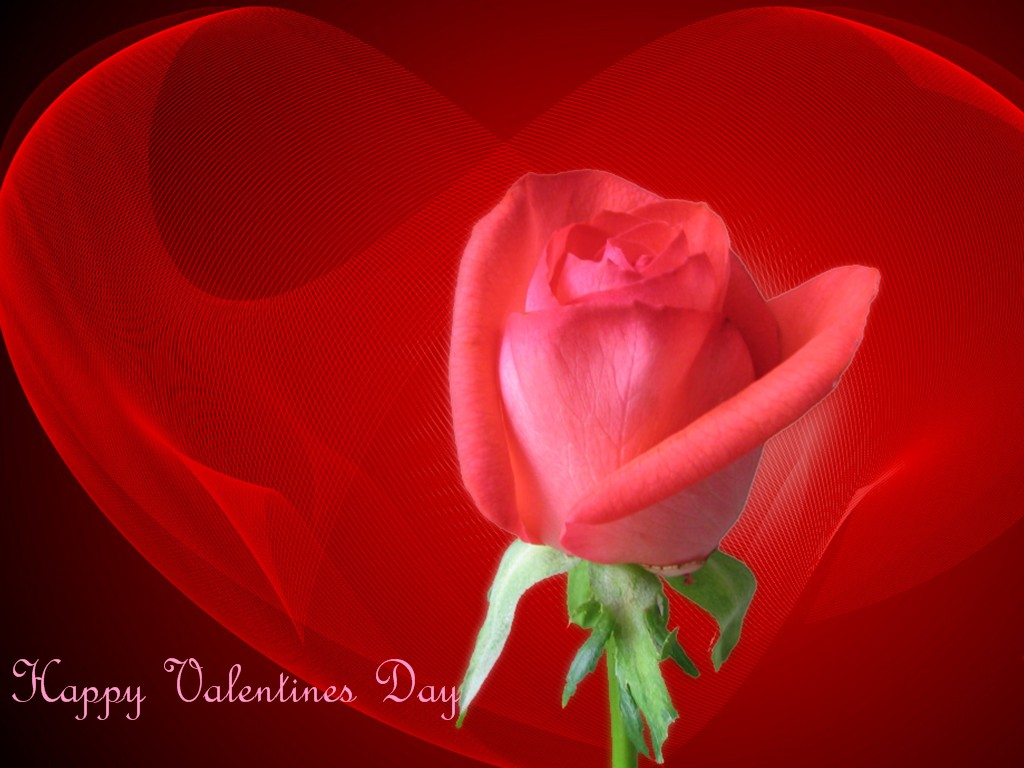 Happy Valentines Day 2012 New Collections