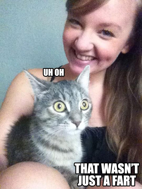 Funny Cat Fart Panic Kitty Is Panic
