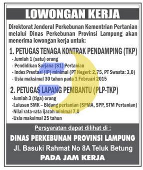 Recruitment Dinas Perkebunan Provinsi Lampung