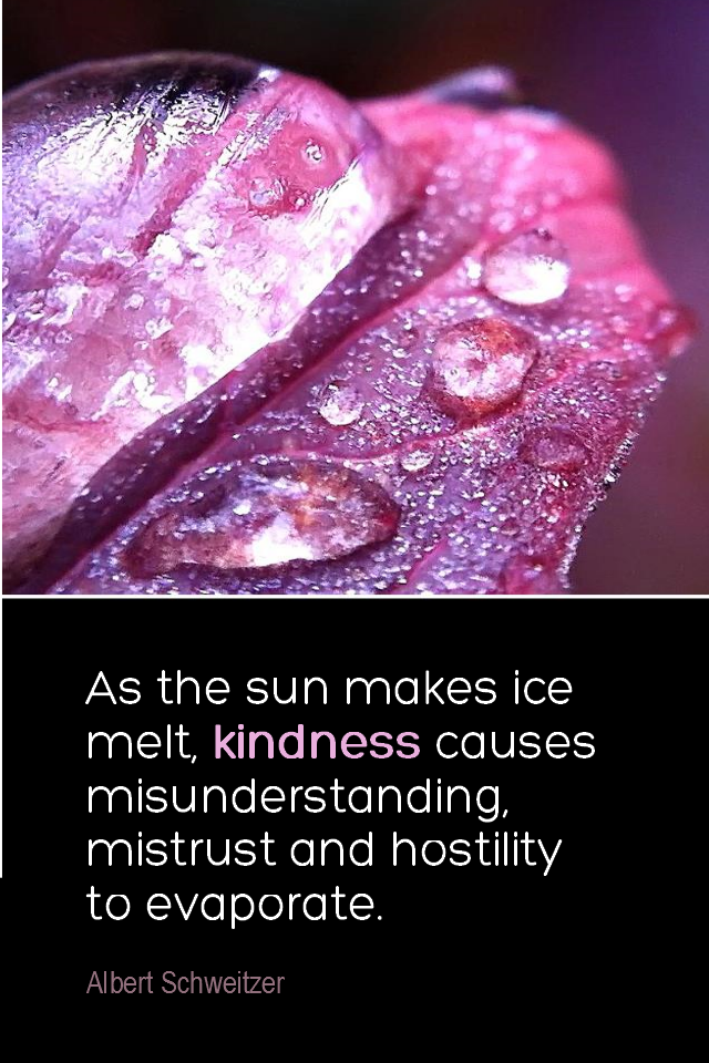 visual quote - image quotation for COMPASSION - As the sun makes ice melt, kindness causes misunderstanding, mistrust and hostility to evaporate. - Albert Schweitzer