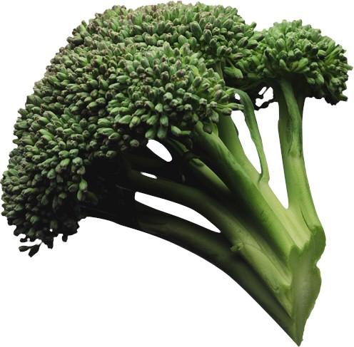 Curafacil - Alimentos que contienen silicio ...