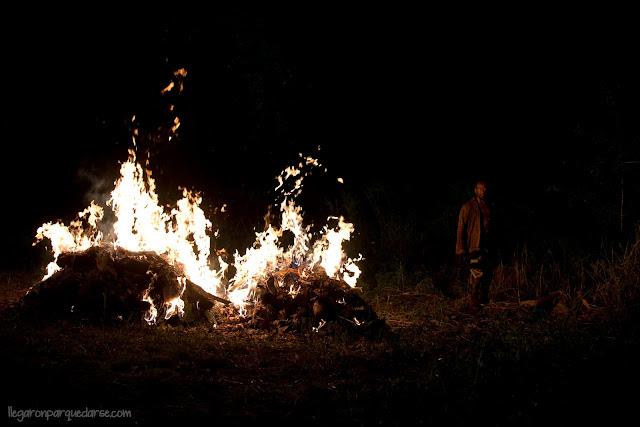 Lennie James como Morgan Jones - The Walking Dead _ Season 6, Episode 4