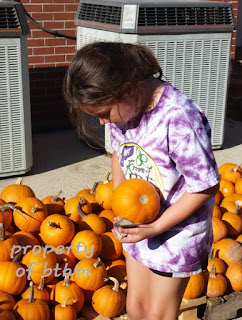miss grace and pumpkins 2