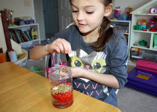 Tessa poured corn syrup, red hots, lentils and lima beans into a clear plastic jar to create the blood model. Each item represents a component of blood (corn syrup = plasma, red hots = red blood cells, lentils = platelets, lima beans = white blood cells).