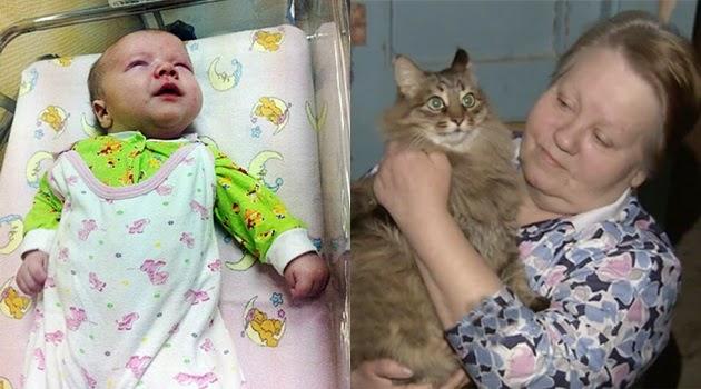 Kucing Ini Mendadak Terkenal Setelah Selamatkan Bayi