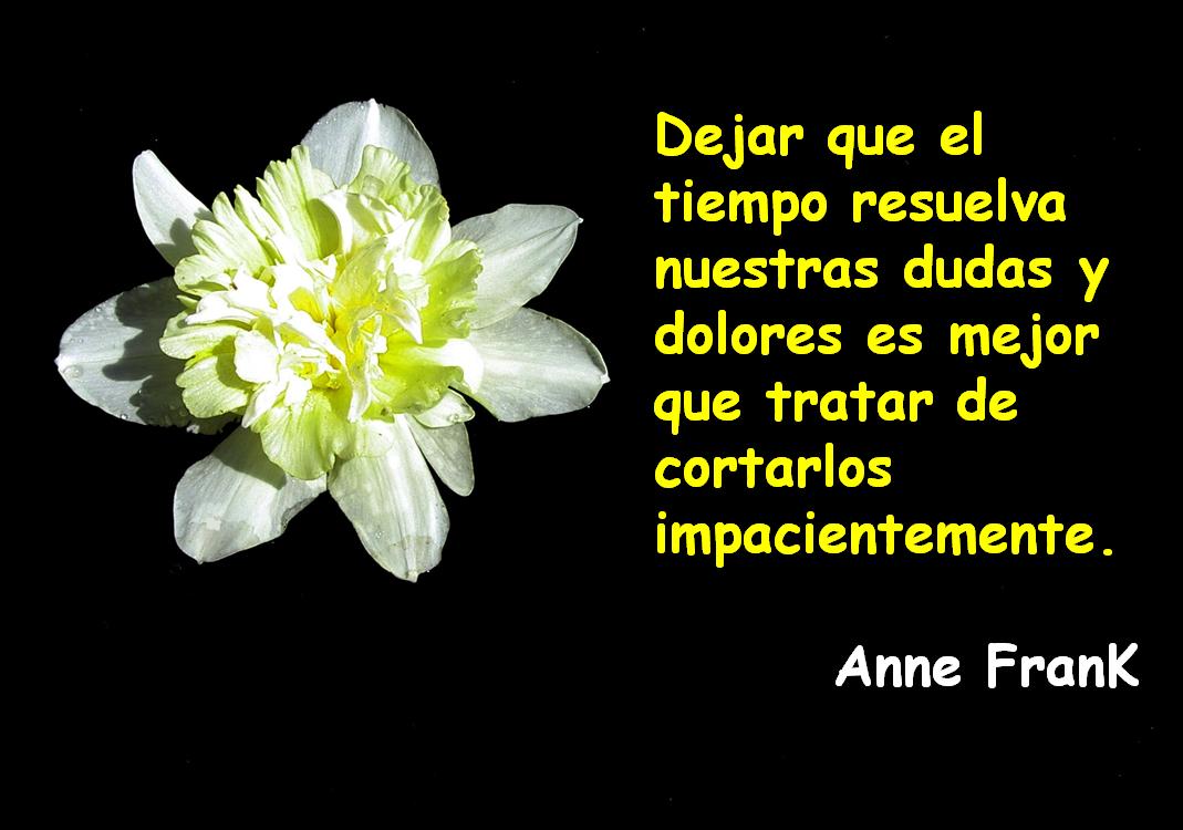 Frase de Anne Frank