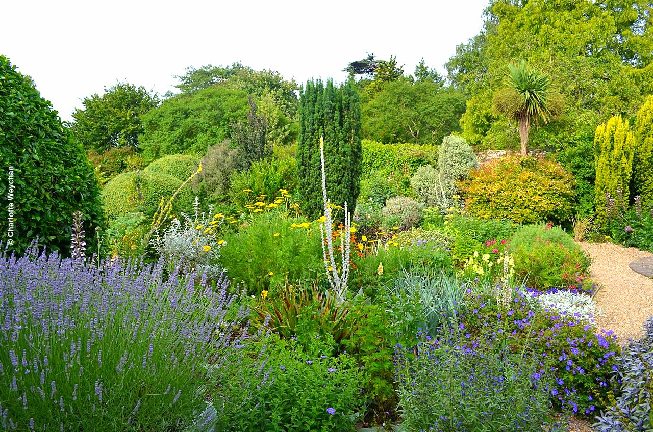 attempt to get some new shots of denmans early this morning john brookes above went and found a ladder and i perched on top to look at the garden designing - Garden Design John Brookes