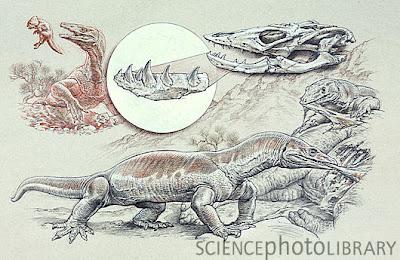 prehistoric varanidae Estesia