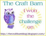 I won the Craft Barn Challenge