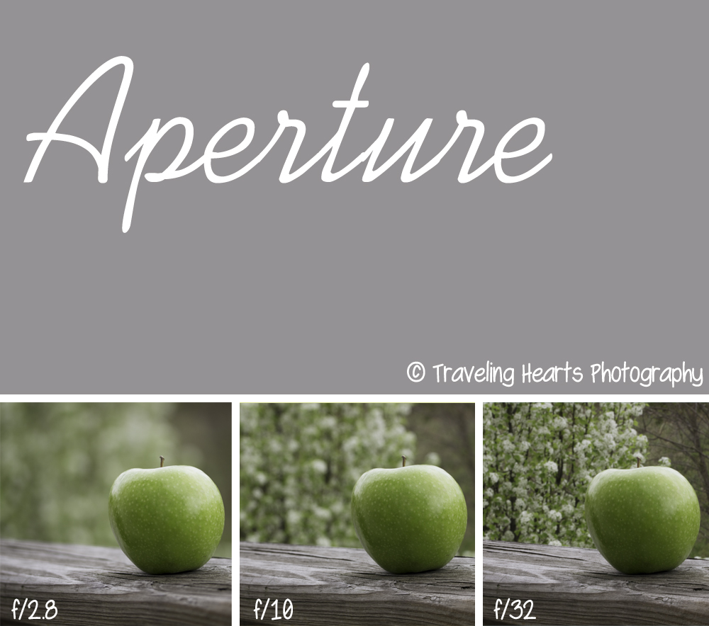 Traveling hearts photography manual tutorial 5 aperture as you can see from this diagram your aperture or fstop number can completely change the look of your photograph when you fully understand and embrace pooptronica Images