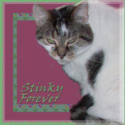 RIP STINKY
