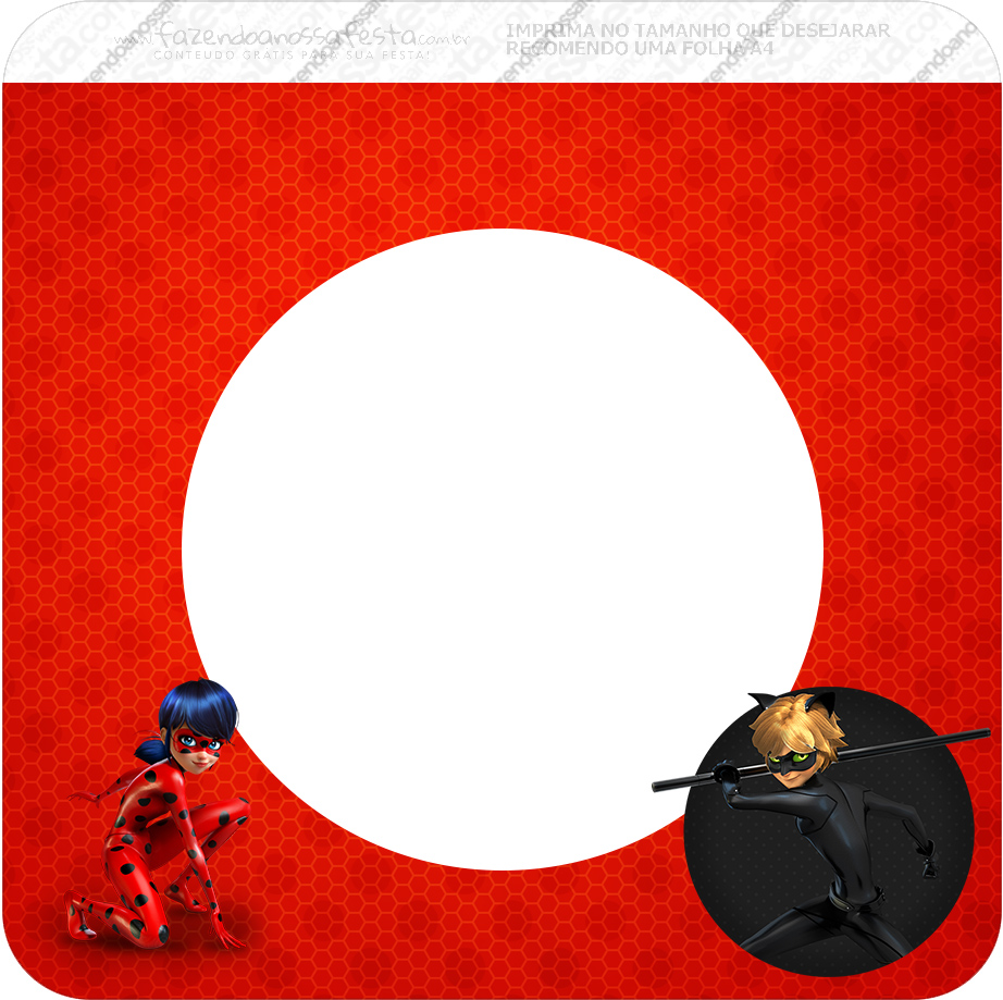 Ladybug Photo Invitations with good invitation template