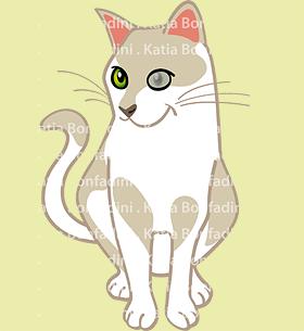 Um gatinho para Angie