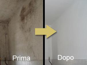 Ditta decocaravaggio di di maggio vito pittura antimuffa for Antimuffa per pareti