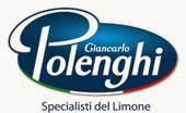 Polenghigroup
