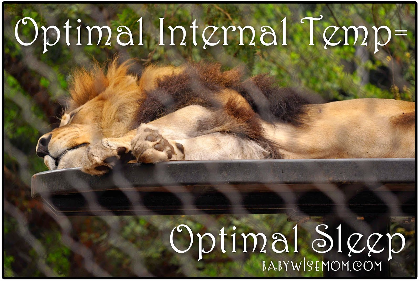 Optimal Internal Temp=Optimal Sleep