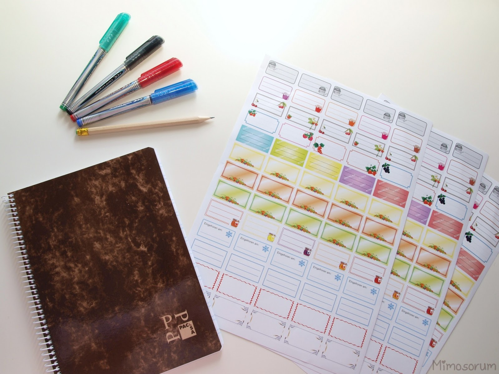Notebooks for School. Cuaderno para el colegio. Mimosorum