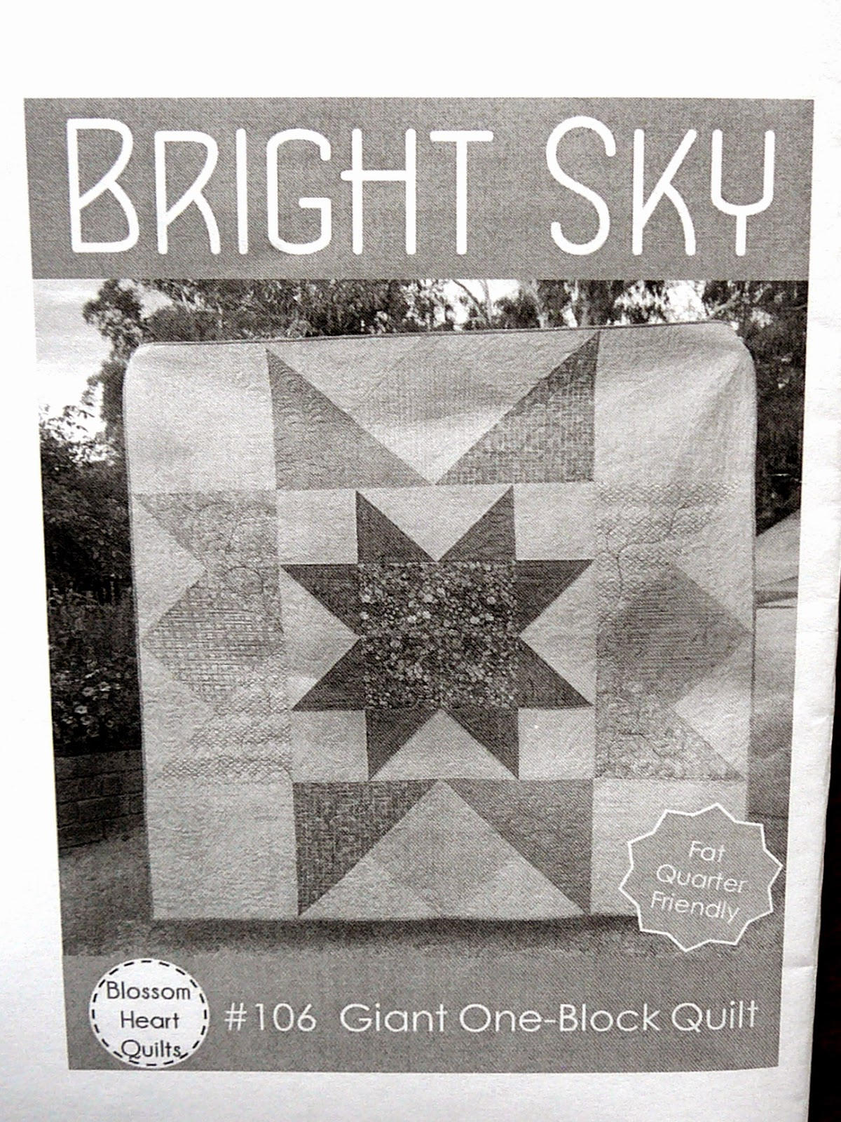 http://www.craftsy.com/pattern/quilting/home-decor/bright-sky/89729