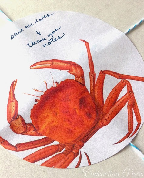 red crab sticker