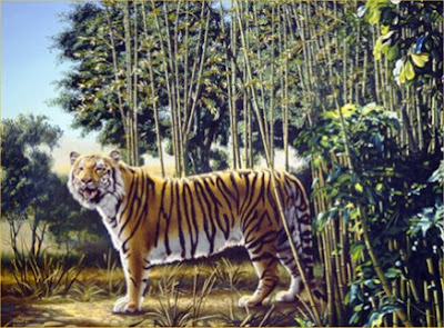 the hidden tiger, mind trick, optical illusion, entertainment, strange