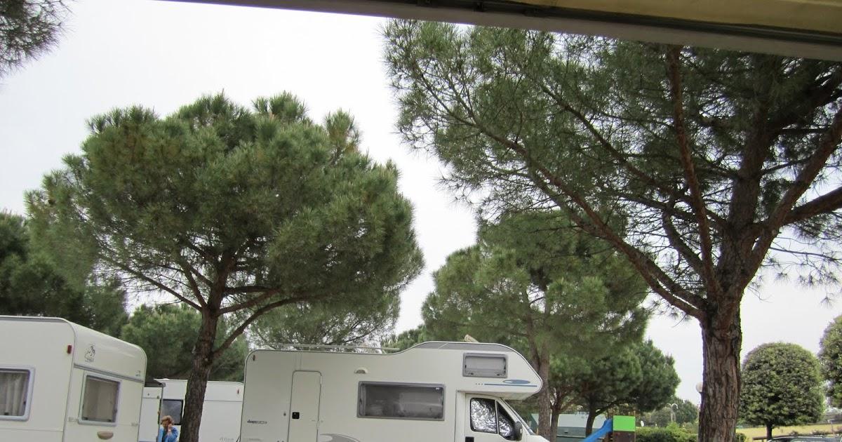aree camper il camping le palme a lazise vicino a gardaland. Black Bedroom Furniture Sets. Home Design Ideas