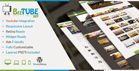 responsive wordpress video theme