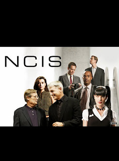 Download - NCIS S10E02 - HDTV + RMVB Legendado