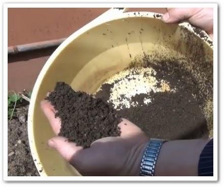видео урок Органическое удобрение своими руками