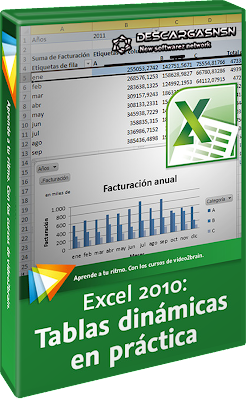 Video2Brain: Excel 2010: Tablas dinámicas en práctica (2012)