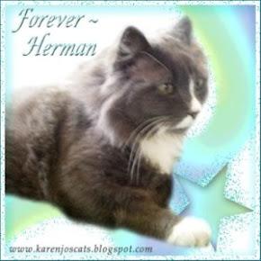 Forever, Herman