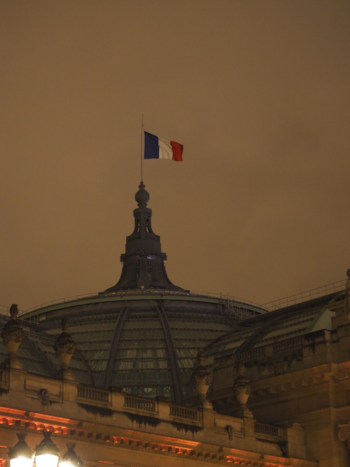 French flag at night time