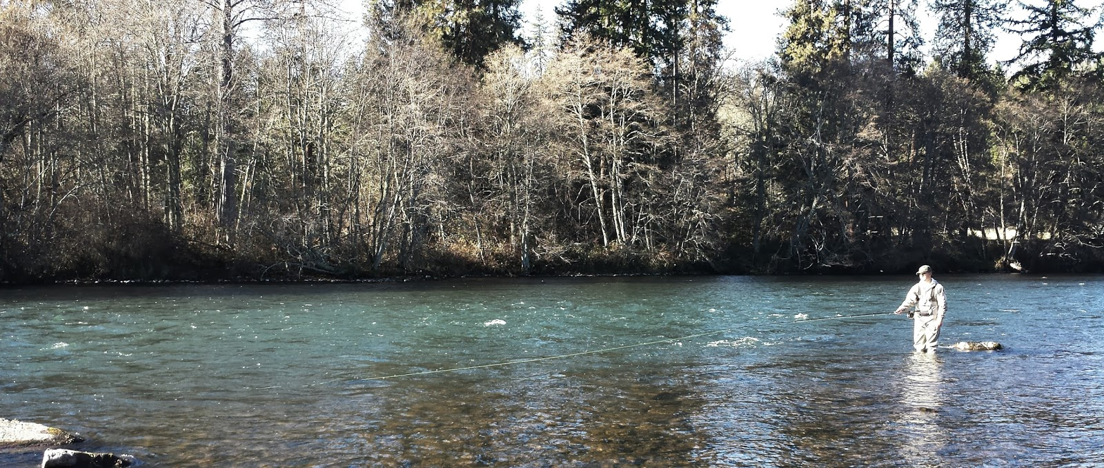 Rogue river and southern oregon fly fishing guide proud papa for Rogue river oregon fishing