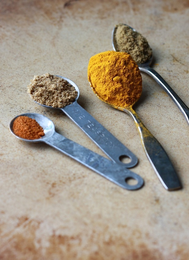 Turmeric, coriander, cumin, and cayenne pepper spices for Coconut Turkey Curry by SeasonWithSpice.com