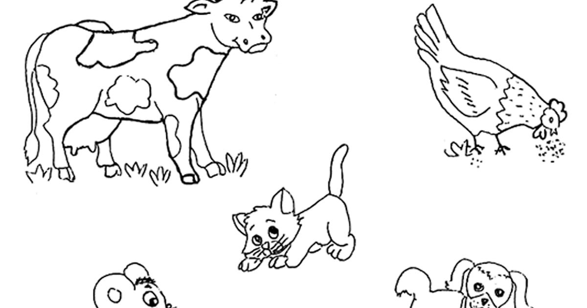 CuentosDeDonCoco.Com: ANIMALES MAMÍFEROS PARA COLOREAR