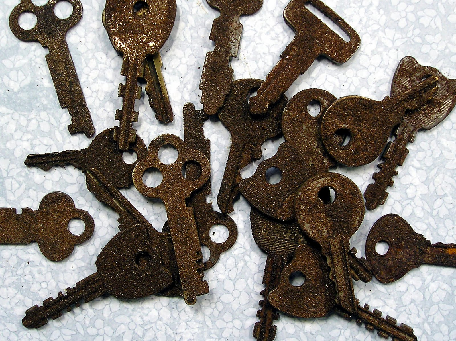 Dr house cleaning how to remove rust from old keys for Classic house keys