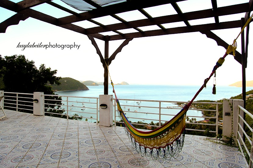 hammock in paradise photo