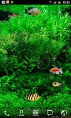 Fish Tank Live Wallpaper 1.jpg