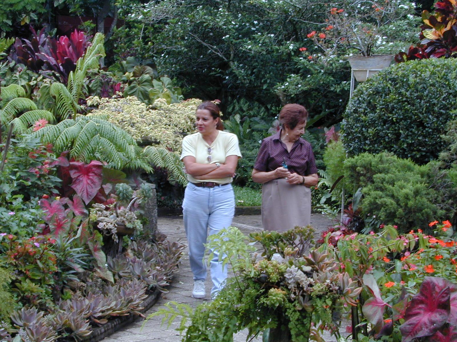 Paisajismo pueblos y jardines febrero 2011 for Paisajismo jardines fotos