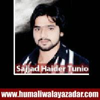 http://ishqehaider.blogspot.com/2013/11/sajjad-haider-tunio-nohay-2014.html