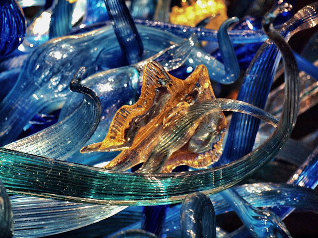 #Chihuly, #Seattle #ChihulyMuseum