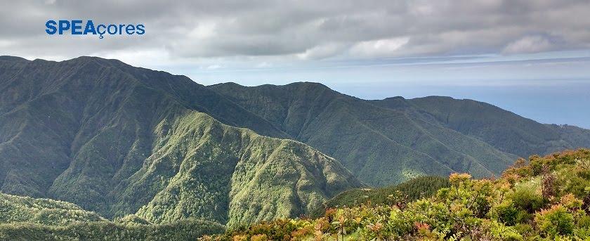 SPEA Açores