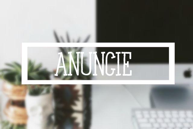 Para Anunciar no Blog