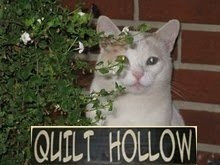 The Quilt Hollow