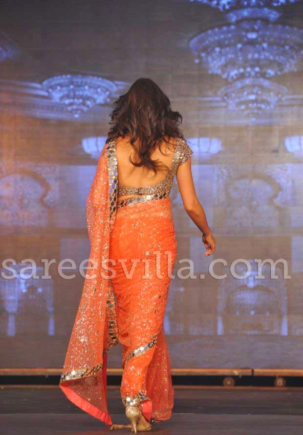 Deepika Padukone In Backless Blouse