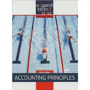 Principles of accounting nissongos diary principles of accounting fandeluxe Choice Image