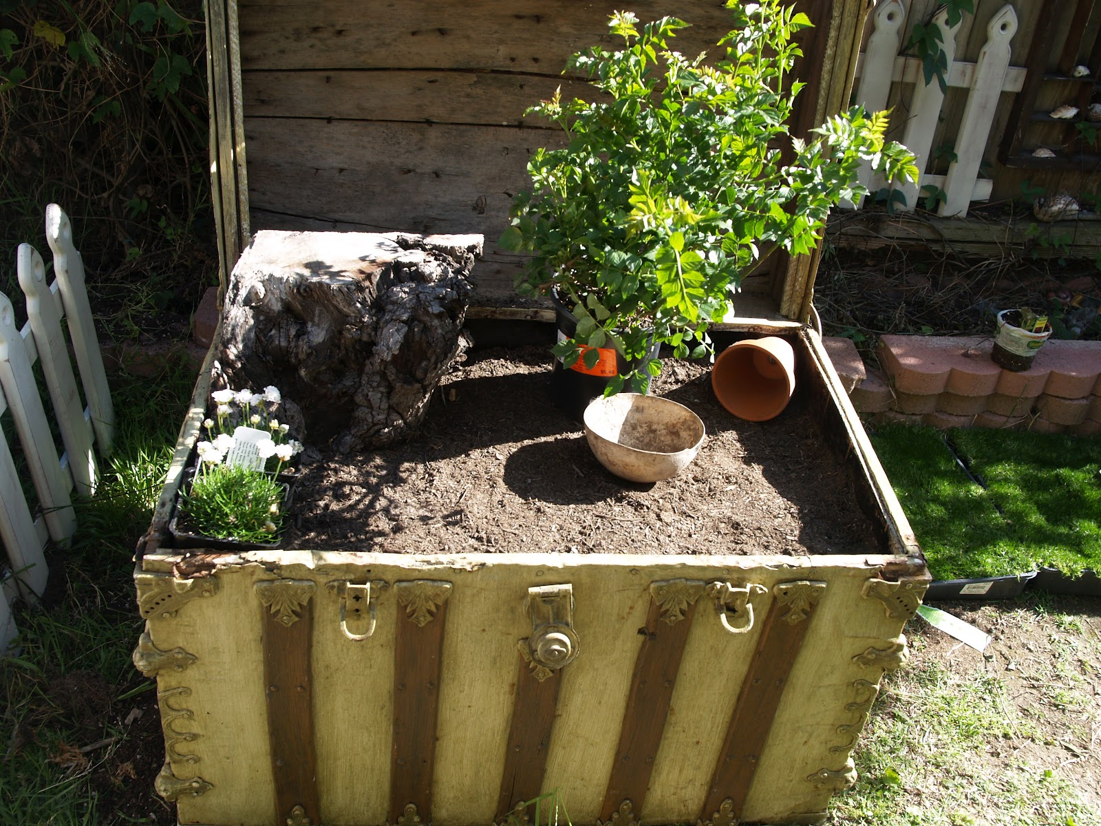 planting your fairy garden