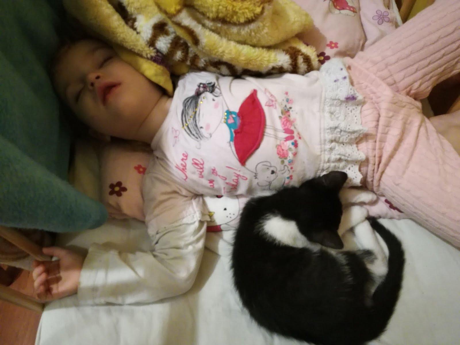 Jak padną tak śpią dwa rozrabiaki