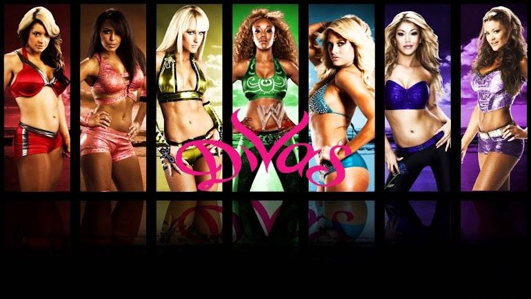 WWE SMACK DOWN RAW FIGHT VIDEOS