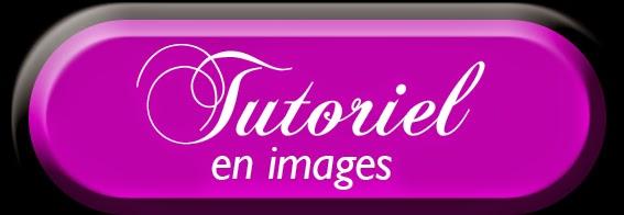 http://nails-arcenciel.blogspot.fr/2015/02/tutoriel-fleurs-de-pavots-one-stroke.html?spref=fb